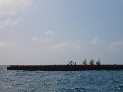 2007-8-5 001.jpg