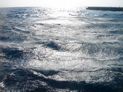 2007-8-5 014.jpg