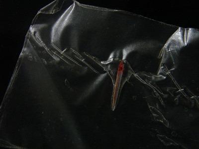 2007-9-25 017.jpg
