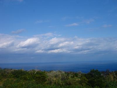 2008-01-19 018.jpg