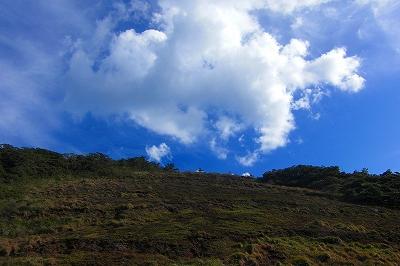 2008-11-26 018.jpg