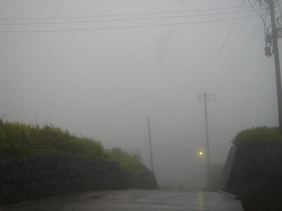 2008-5-11 018.jpg