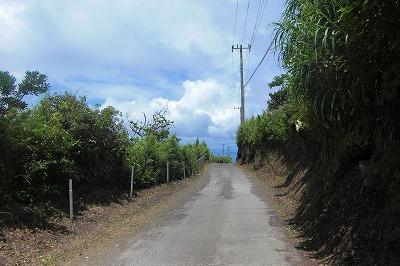 2008-7-10 004.jpg