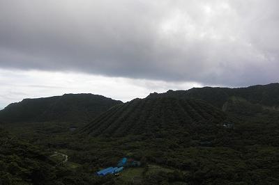 2008-7-16 004.jpg