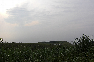 2008.6 058.jpg
