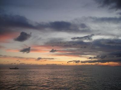 2009-11-5 054.jpg