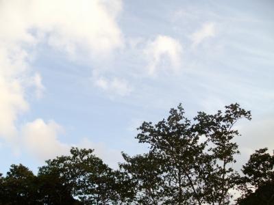 2009-12-9 041.jpg