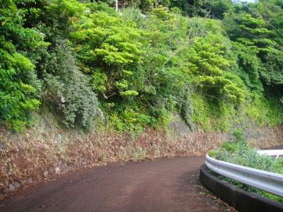 2009-6-07 007.jpg