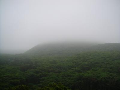 2009-6-22 008.jpg