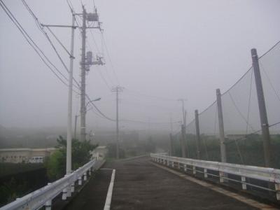 2009-8-31 001.jpg