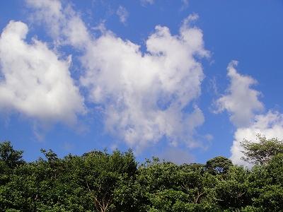 2010-10-12 004.jpg