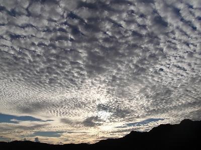 2010-10-12 036.jpg
