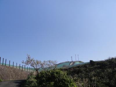 2010-2-21 005.jpg