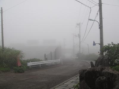 2010-6-27 010.jpg