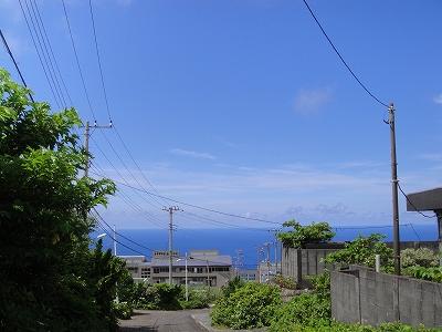 2010-7-21 001.jpg