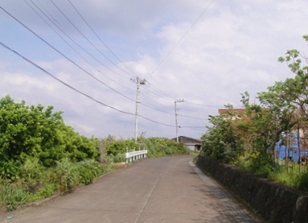 2011-04-19 001.JPG
