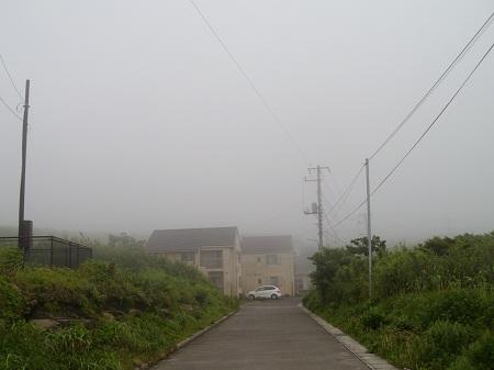 2011-06-20 007.JPG