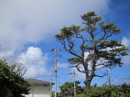 2011-09-13 007.JPG