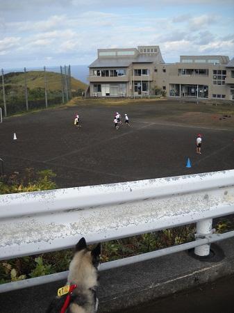 2012-01-19 013.JPG