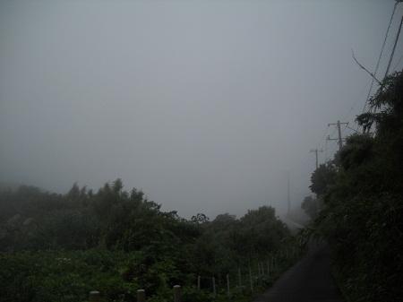 2012-07-06 044.JPG