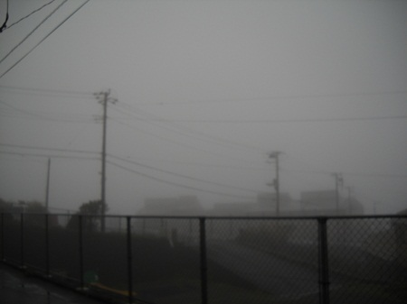 2011-11-29 001.JPG