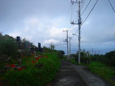 2007-10-2 014.jpg