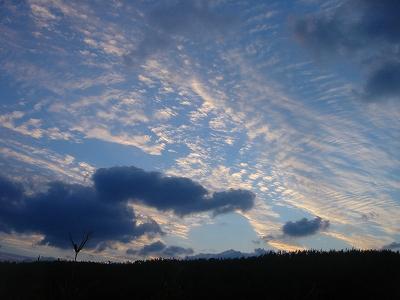 2007-12-18 017.jpg