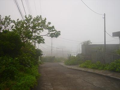 2007.5 001.jpg