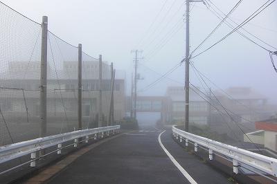 2008-11-7 003.jpg