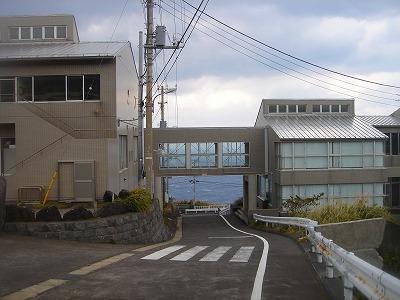 2008-2-27 020.jpg