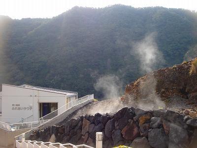 2008-3-1 004.jpg