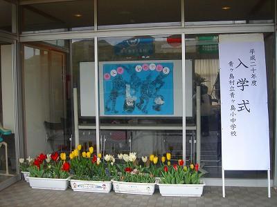 2008-4-7 001.jpg