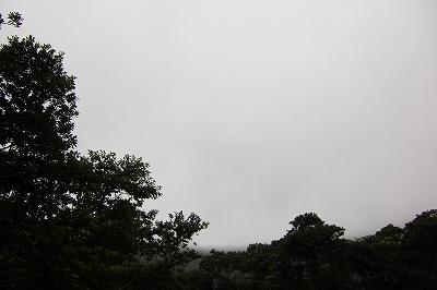 2008-6-22 006.jpg