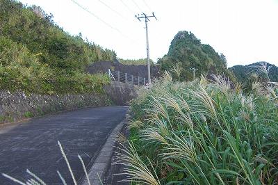 2008-9-12 009.jpg