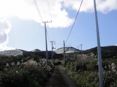 2009-11-10 010.jpg