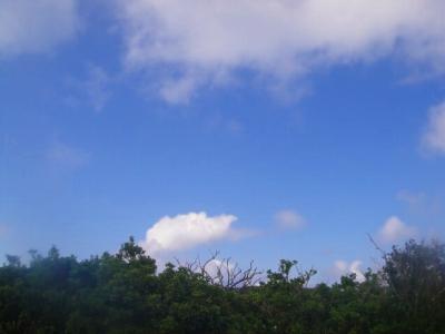 2009-9-16 006.jpg