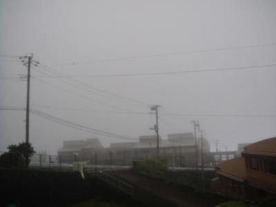 2009-9-8 011.jpg