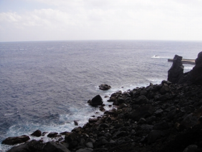 2010-1-30 011.jpg