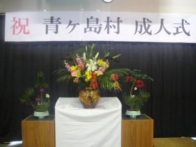 2010-1-5 034.jpg