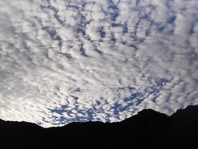 2010-10-12 030.jpg
