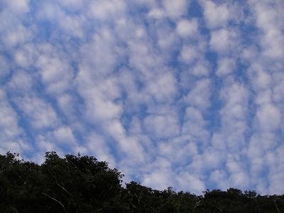 2010-10-12 042.jpg