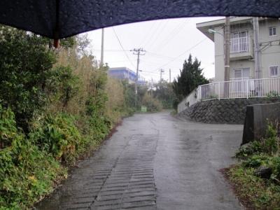 2010-2-17 007.jpg