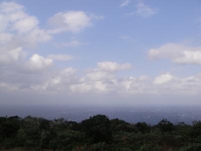 2010-3-10 007.jpg