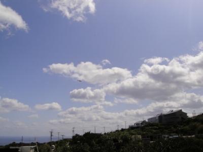 2010-3-30 066.jpg