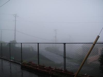 2010-7-10 075.jpg