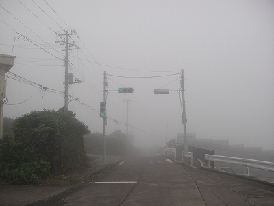 2010-7-11 004.jpg