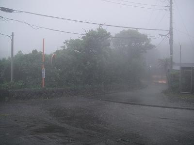 2010-7-8 004.jpg