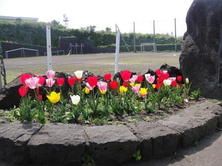 2011-04-10 009.JPG