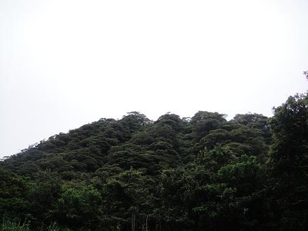 2011-05-17 059.JPG