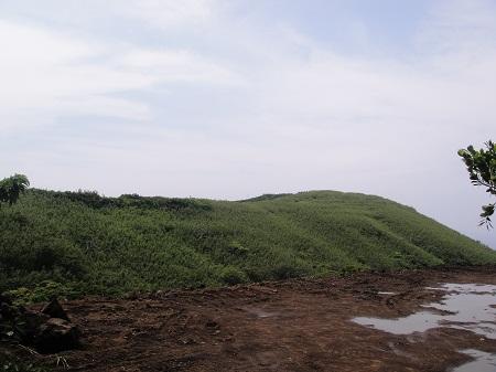 2011-06-06 004.JPG